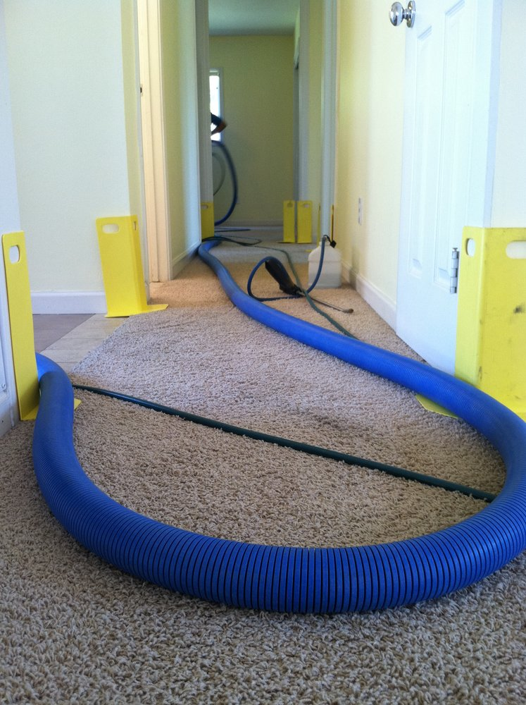 Carpet Cleaning Deals Dutch Village Ca Expert Area Rug Carpet Cleaners