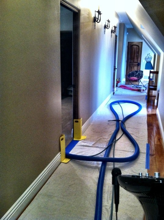 Condo Carpet Cleaning Service Dutch Village Rug Cleaning Compnay Near Me