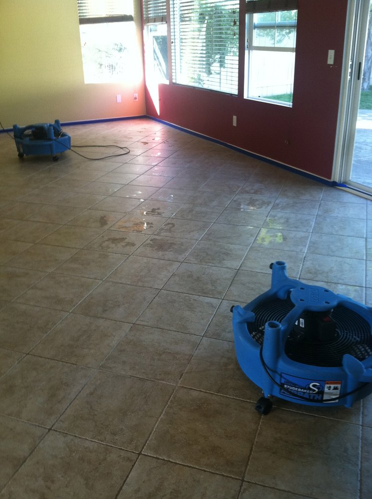 Dry Carpet Cleaning Service Dutch Village Grout Cleaning Company