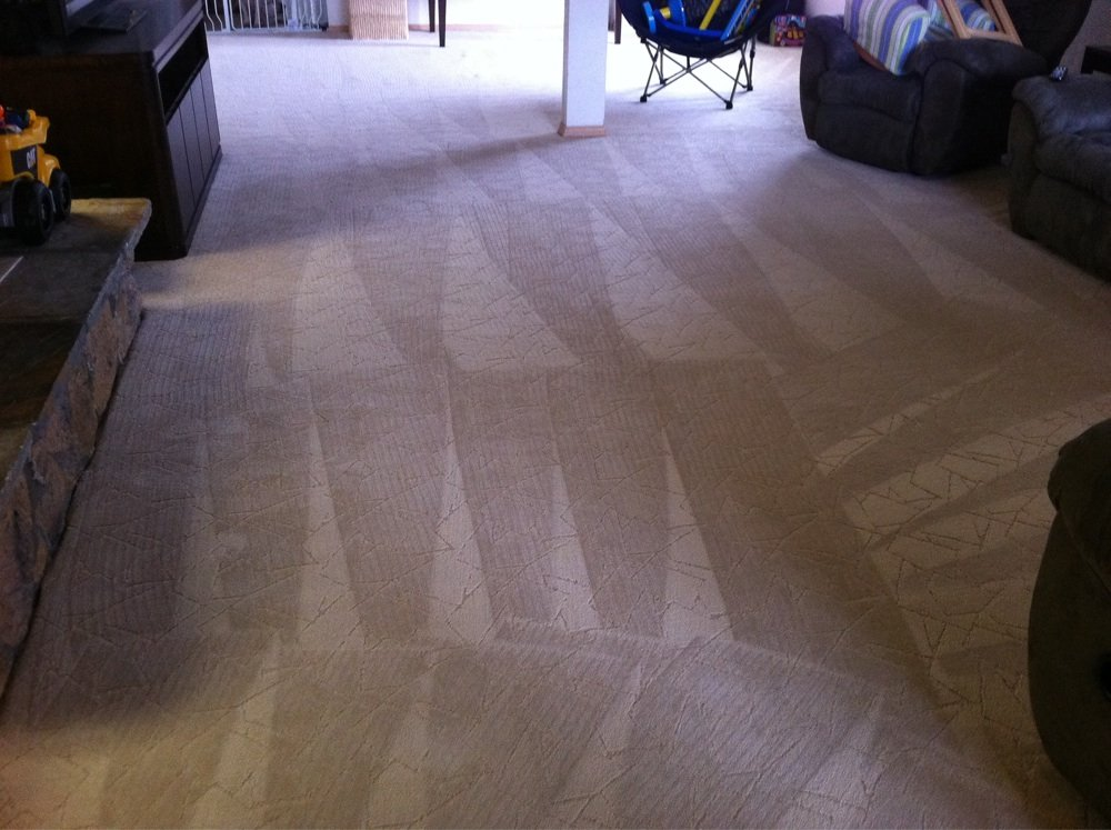Condominium Carpet Cleaning Service Dutch Village Rug Cleaners
