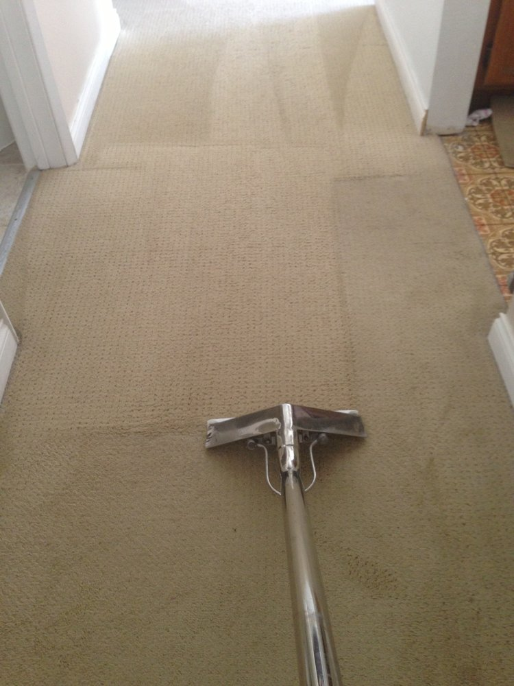 Bonded Carpet Cleaning Service Dutch Village Carpet Cleaning