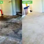 Most Effective Carpet Cleaning D.I.Y. Tips in Dutch Village Carpet Cleaners