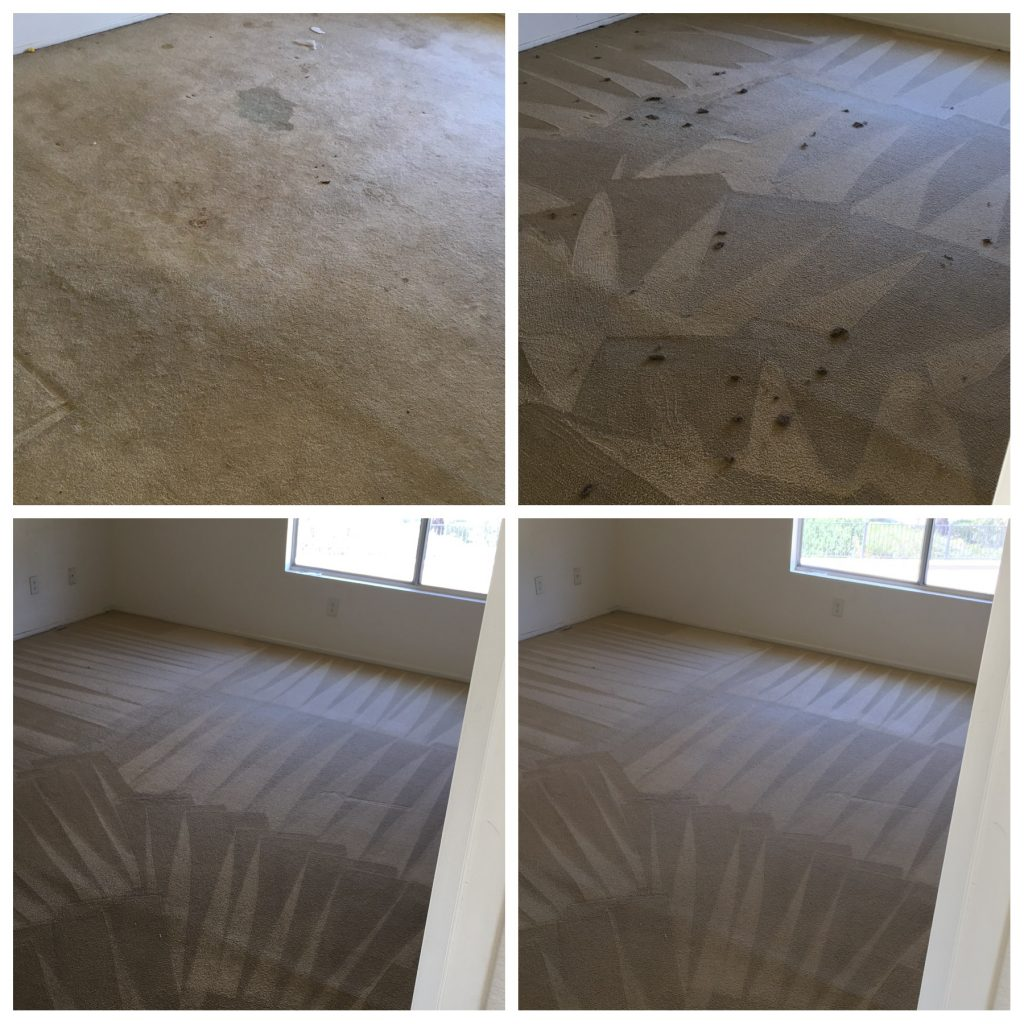 Apartment Carpet Cleaning Service Dutch Village Carpet Cleaning Services