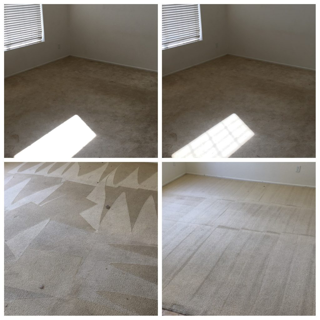 Eco Friendly Carpet Cleaning Service Dutch Village Steam Cleaning